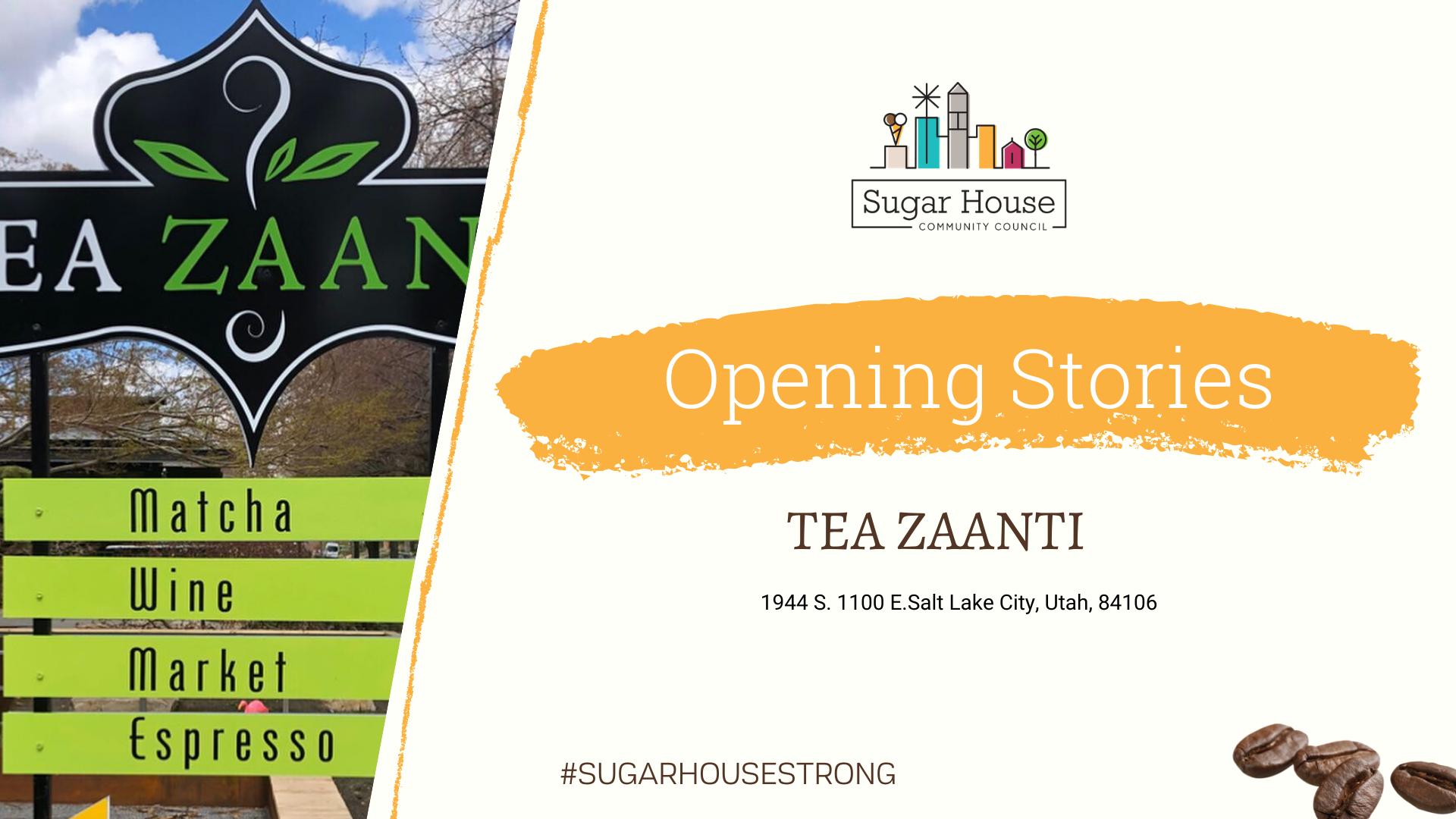Tea Zaanti Video